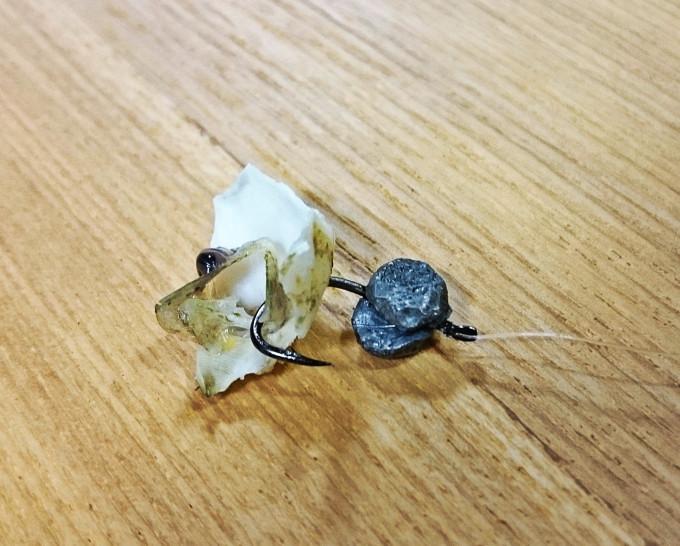 黒鯛に噛まれたガン玉とフジツボ
