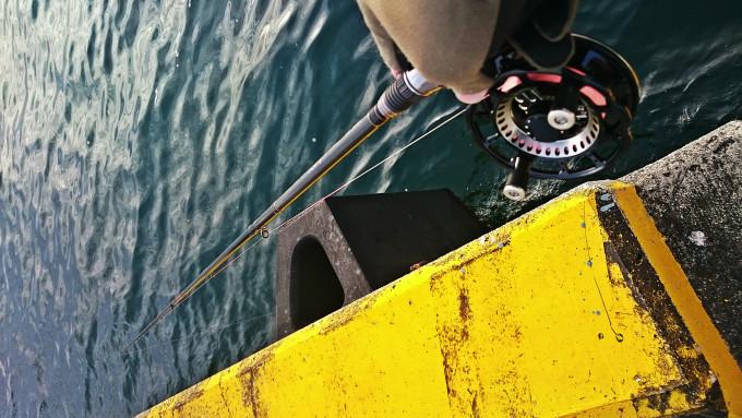 船のアタリゴムの裏を攻める