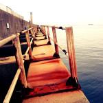 2015年の西宮落とし込み黒鯛を振り返る10【大阪北港夢洲】