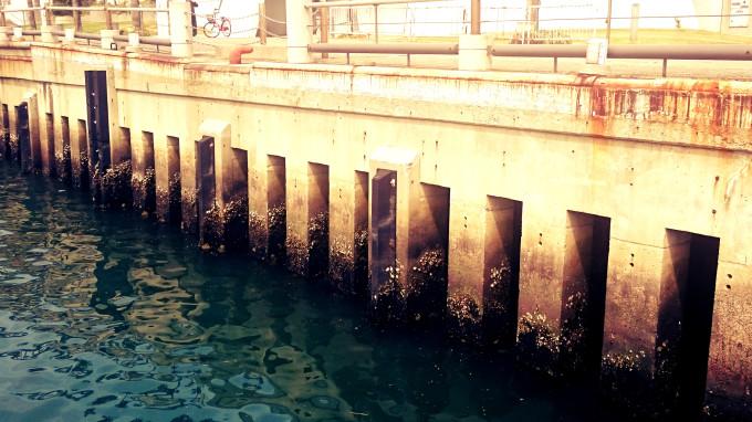 大阪南港ATC裏のスリットケーソン