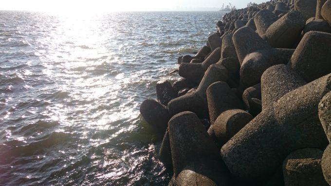 鳴尾浜 テトラ前打ち