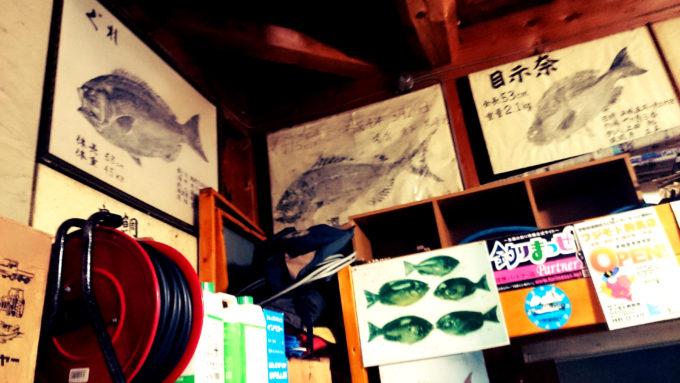 由良半島 坂本渡船