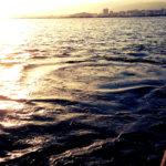 MKこと南甲子園浜で最後のフジツボ目印を楽しんできました