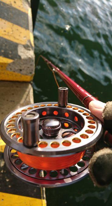 プロマリン(PRO MARINE) リール 海将黒鯛 ゴールド KA-87G