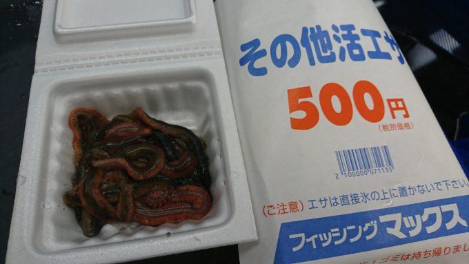 フィッシングマックス芦屋店 アオコガネ
