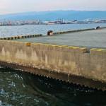 【西宮】釣り初め(つりぞめ)の場所に選んだ西宮の海は激渋だった