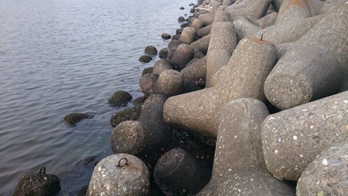 西宮湾奥テトラポット