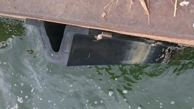 防舷材についたフジツボ