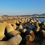 【河内渡船】憧れの地、神戸和田防新波止で前打ちをしてきました!