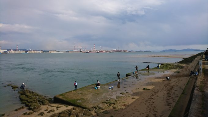 高梁川 乙島干潟