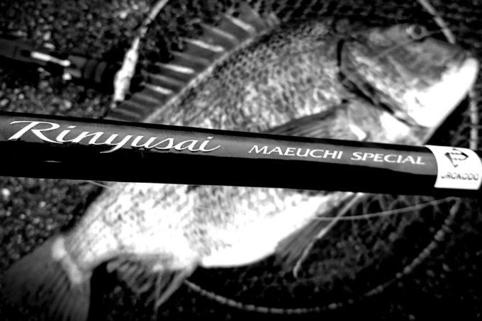 SHIMANO シマノ リンユウサイ 前打ちスペシャル Rinyusai Maeuchi Special