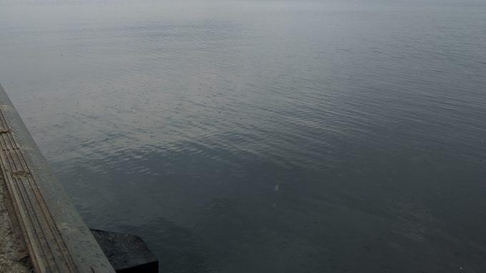 岡山 児島湾奥