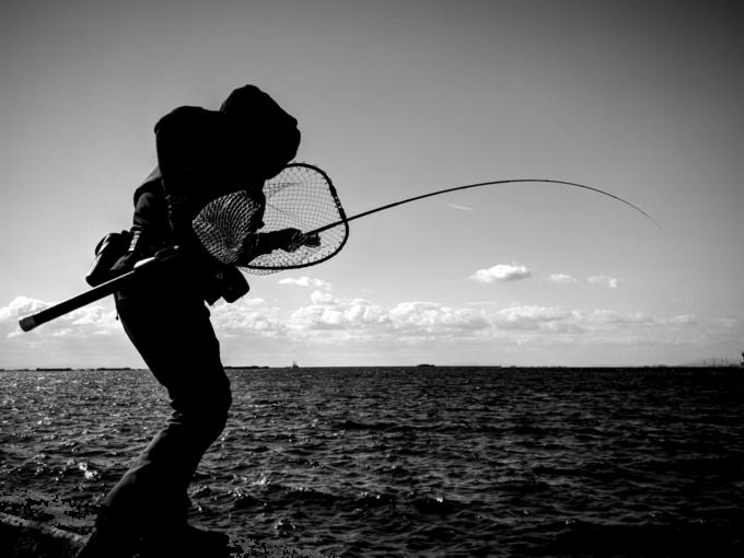 釣りハマ! ローレル氏