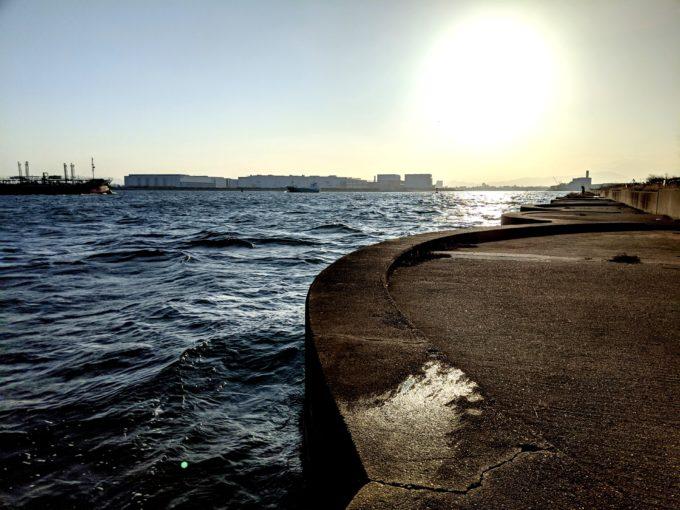 大阪南港 セル石