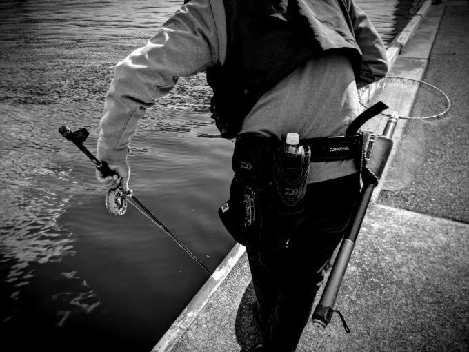 釣りハマ!のローレル氏